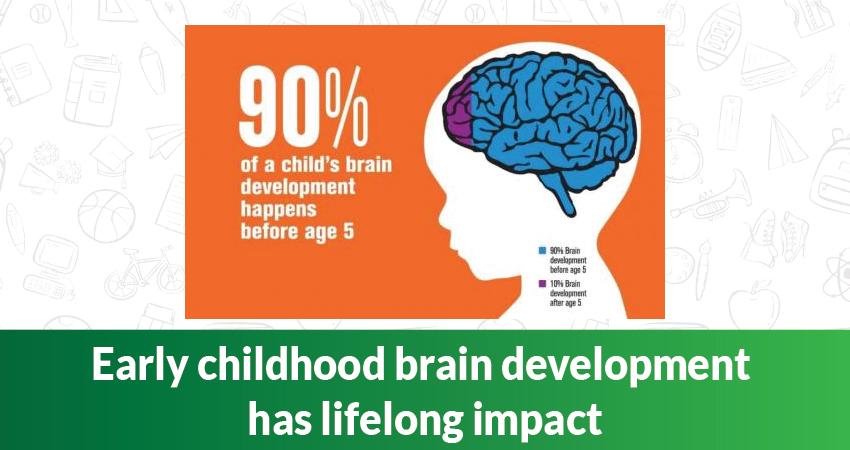 Early childhood brain development has lifelong Impact
