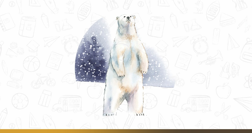 Effects of global warming: A polar bear lost his habitat.