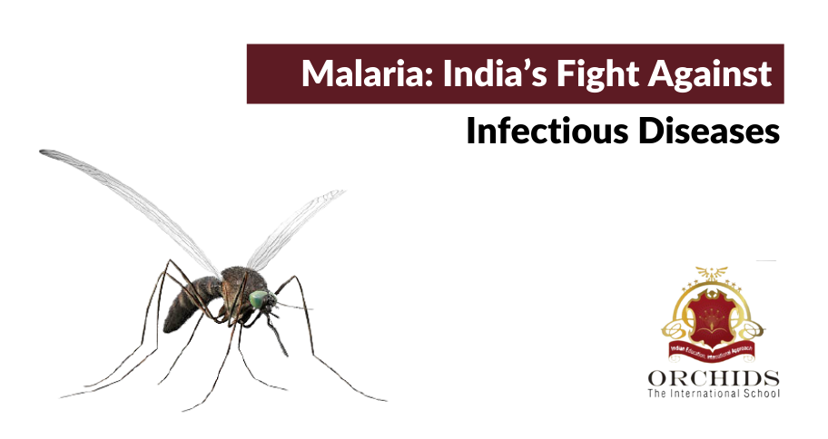 The Malaria Epidemic: India's Fight Against Infectious Diseases