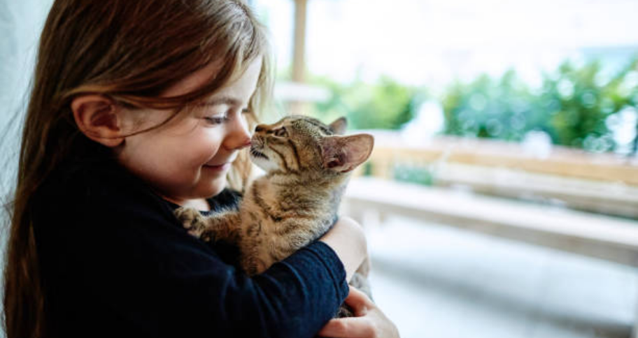a girl plays with her pet cat