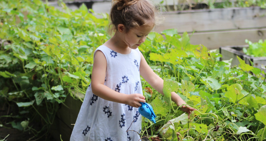 a child playing in the garden